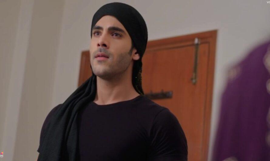 Shakti Astitva Ke Ehsaas Ki Episode 17 May 2021 Written – Virat enters as Goon to save Preeto's family